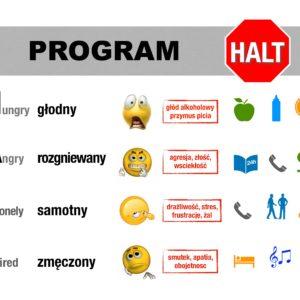 Jak utrzymać się w trzeźwości? – Program HALT